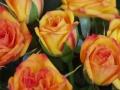 Roses Forever® Messina™