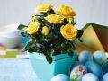 Roses Forever® Sunny Beach™ Easter