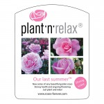 Plant'n'relax_Our last summer