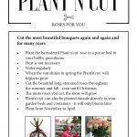 Plant'n'cut care instructions