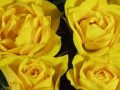 Roses Forever® Hot Yellow™
