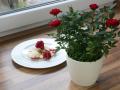 Gourmet Roses™