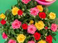 Roses Forever® 16 cm