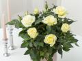 Roses Forever® Bergamo™ Easter