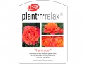 Plant'n'Relax - Thank you
