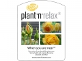 Plant'n'Relax - When you are near